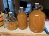 Cider 2020.png