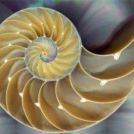 Fibonacci_01123581321