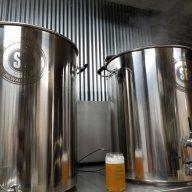 bailey mountain brewer