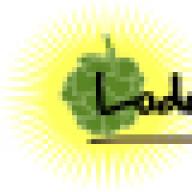 Lodovico