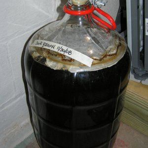 SourBrown-Pellicle
