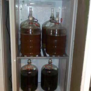 FermentationFridge