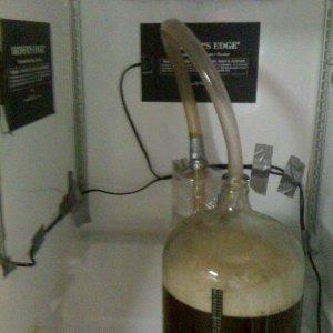 brewferment