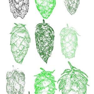 hopsBrushes