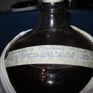 Anabelle Blueberry Mead Secondary