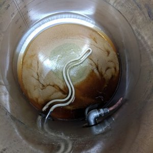 Whirlpool trub