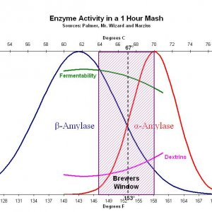 Enzyme Activity In Mash