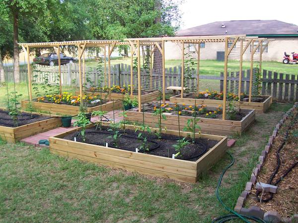 trellis design question home brew forums