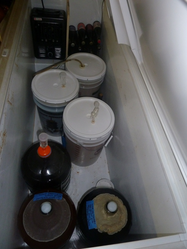 thumb2_full-fermenter-57236