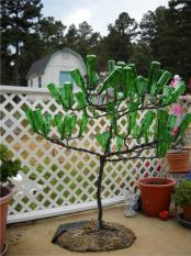 thumb1_bottle_tree-32672