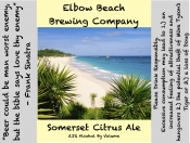 thumb1_somerset-citrus-ale-57190