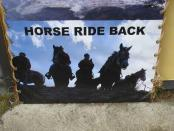 thumb1_hoarse_ride_back-29191