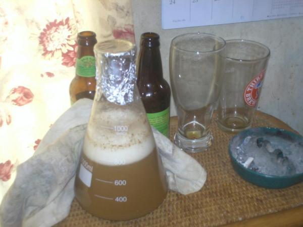 Easy Yeast Washing - unionrdr - 10-420.jpg