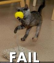 thumb1_13230-cat-fail-12264