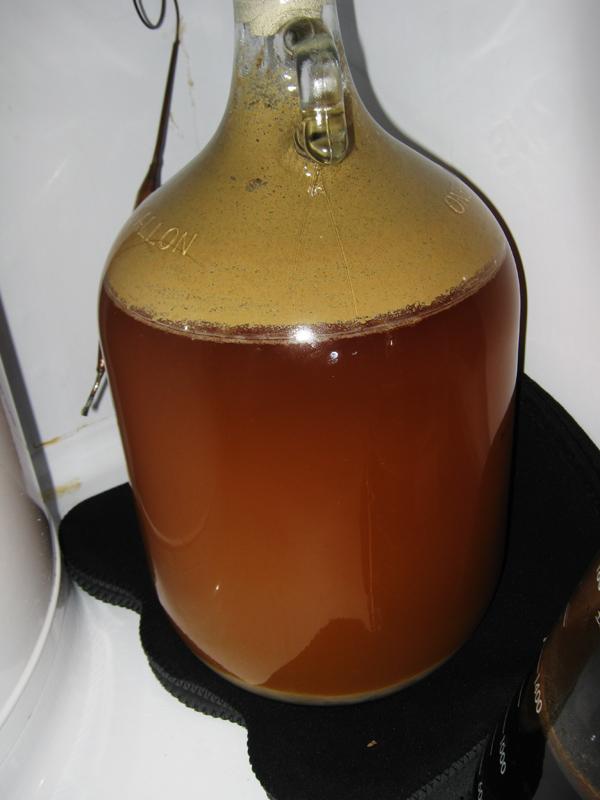 beer2-56694