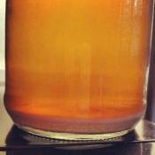 brew-pics