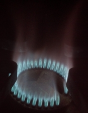 thumb1_bg12-on-natural-gas-64765