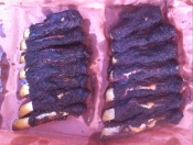 thumb1_beef-back-ribs-2-66109
