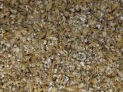 thumb1_179-grain2-10937
