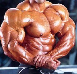 103727main_bodybuilder-34920