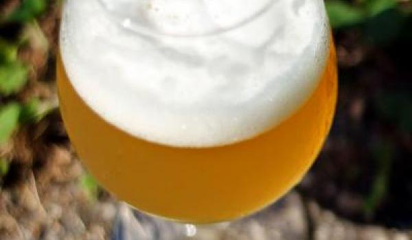 Why Sour Beers?
