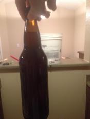 thumb1_honey-brown-ale-bottled-65478