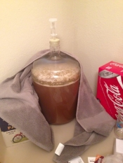 thumb1_honey-brown-ale-carboy-fermenting-65475