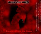 thumb1_blackcat-19984