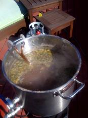 thumb1_kettle-hops-18282