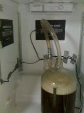 thumb1_brewferment-35342