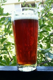 thumb1_red-ale-pic-65969