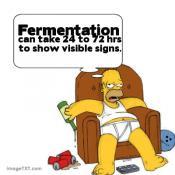 thumb1_fermentation2-27321