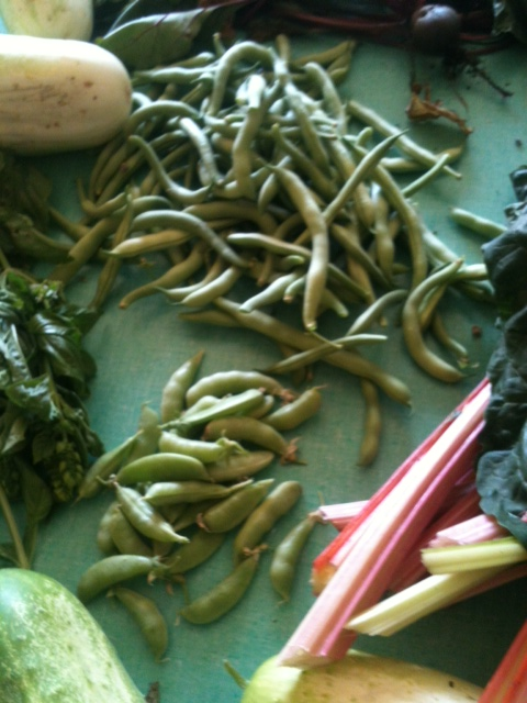 mt-zion-sugar-peas-and-green-beans-july-15-2012-55706