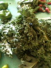 thumb1_mt-zion-kale-july-15-2012-55704