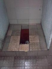 thumb1_2233023-toilets-beijing-14710