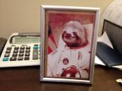 thumb1_sloth1-58855