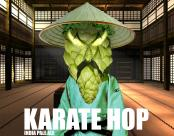 thumb1_karate-hop-34748