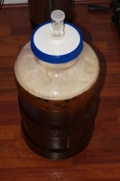 7---fermenting-65933.jpg