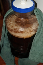 thumb1_kbs-fermenter-66079