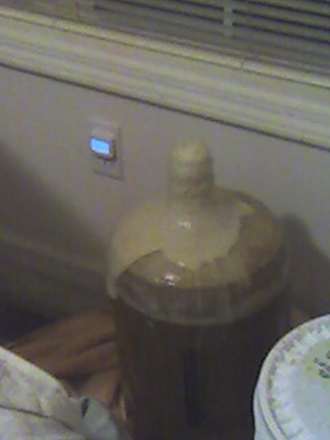fermentation4-36236