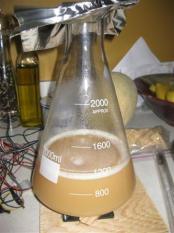 yeaststarter
