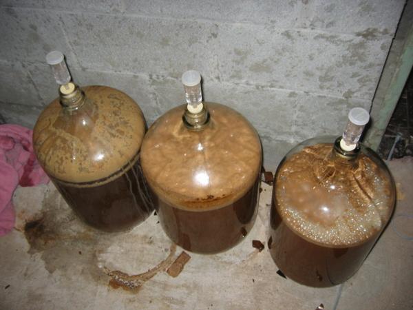 541-beerbeerbeer027-12482