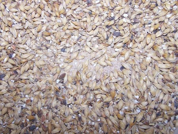6585-grain2-8769