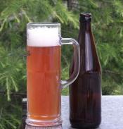 beersampciders