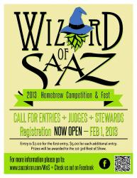 Wizard of SAAZ Home Brew Competition - mdanks86 - wos-2013-37.jpg