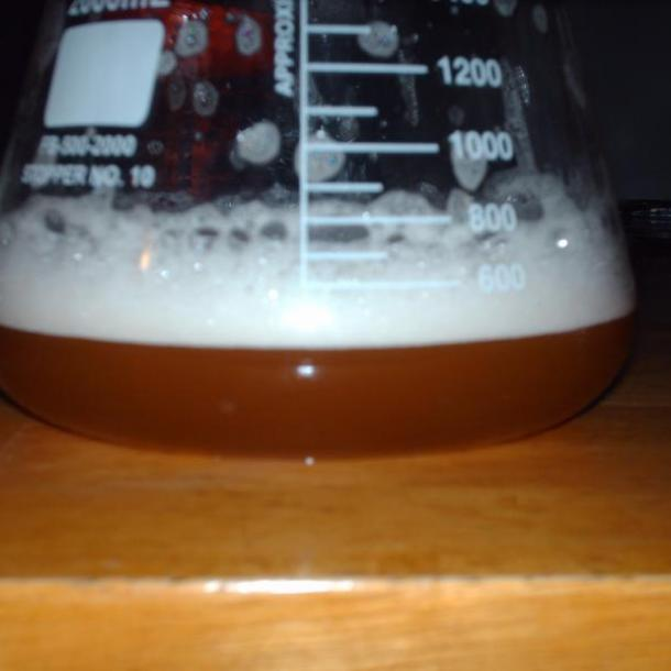 Harvesting Yeast from commercial bottles - NordeastBrewer77 - hpim0650-191.jpg