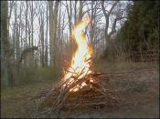 thumb1_fire1-14408