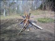 thumb1_fire2-14409