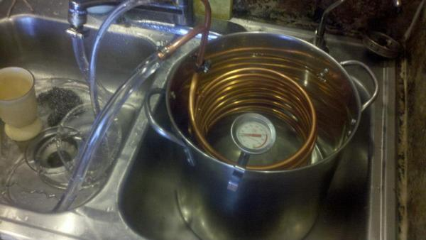 DIY Cost-Effective Immersion Wort